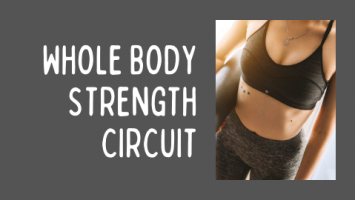 whole body strength circuit