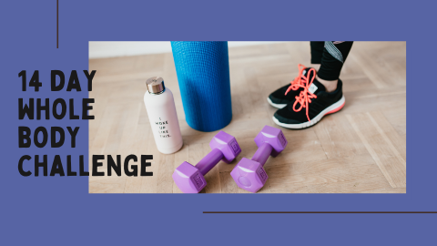 14 day whole body challenge