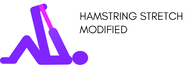 Quick full body stretching routine PDF modified hamstring stretch